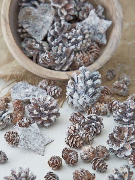 Assorted Mini Pine Cones