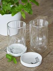 Elegant Double Wall Tea Glass