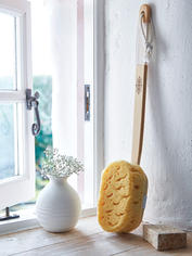 Long Handled Bath Sponge